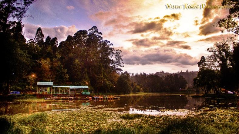 BEST_OF_VISHAL_TOMAR_PHOTOGRAPHY_2010_COLOR_2