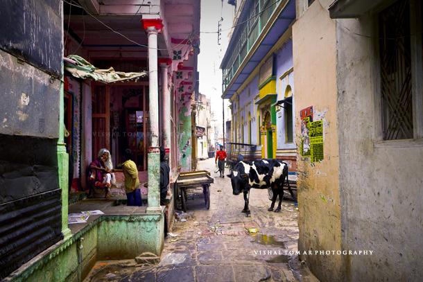 Banaras_blog_vishal tomar_38