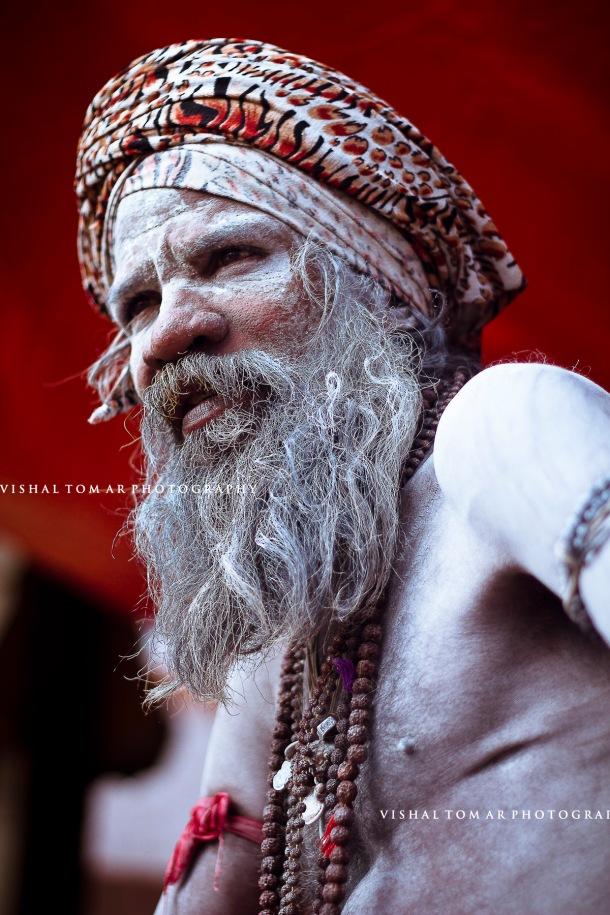 Nashik Kumbh 2015_Vishal Tomar_14