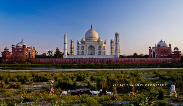 Taj Mahal_VishalTomar_2016_05