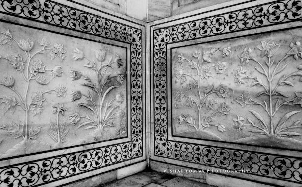 Taj Mahal_VishalTomar_2016_18.jpg
