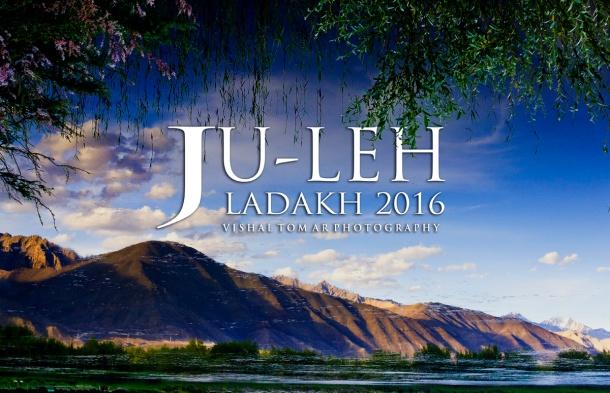 31_Vishal Tomar_Ladakh_2016