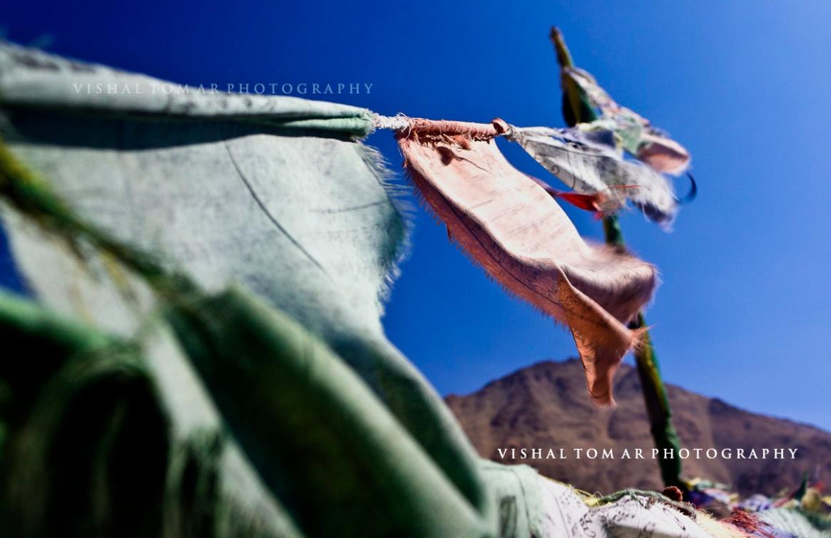 47_Vishal Tomar_Ladakh_2016.jpg